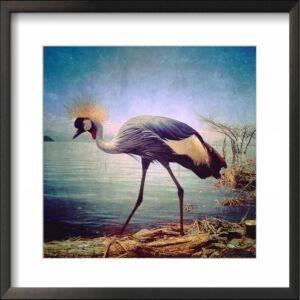 crown crane kenya iPhone